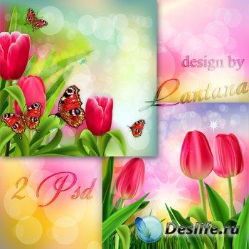 PSD исходники - Тюльпан даёт салют весне
