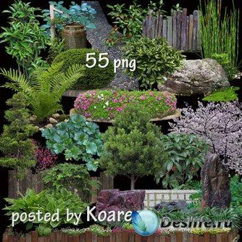 Png клипарт для дизайна - Ландшафтный дизайн - Растения, камни, клумбы, изг ...