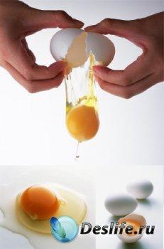 Яйцо разбитое (подборка изображений)
