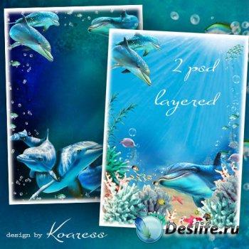 Два многослойных исходника с дельфинами для фотошопа