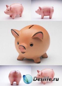 Объекты: Копилка - свинья (подборка фото)