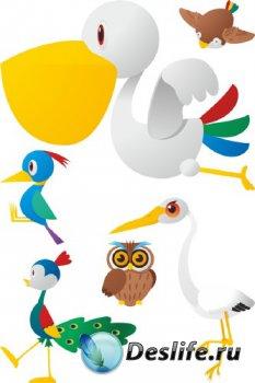 Птицы (подборка векторных отрисовок)