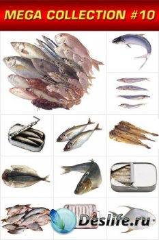 Мега коллекция №10: Рыба