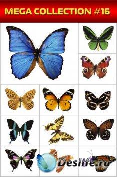 Мега коллекция №16: Бабочки и мотыльки