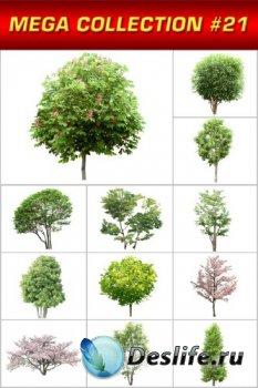 Мега коллекция №21: Деревья