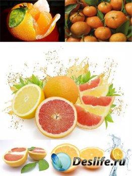 Цитрусовые: Апельсин (подборка изображений)