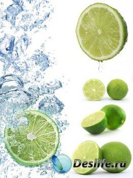 Цитрусовые: Лайм (подборка изображений)