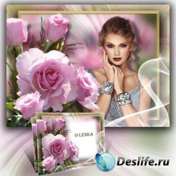 Рамка коллаж - Розовая роза, аромат весны