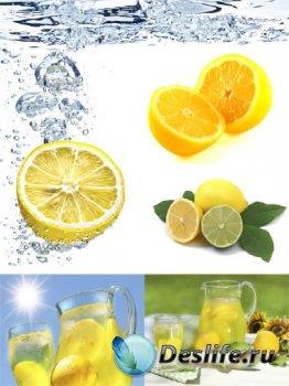 Цитрусовые: Лимон (подборка изображений)