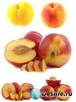 Фрукты: Персик (подборка изображений)