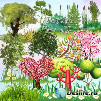 Клипарт png - Деревья, трава, камыши 2