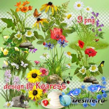 Png клипарт для дизайна - Летние цветочные кластеры, элементы полян