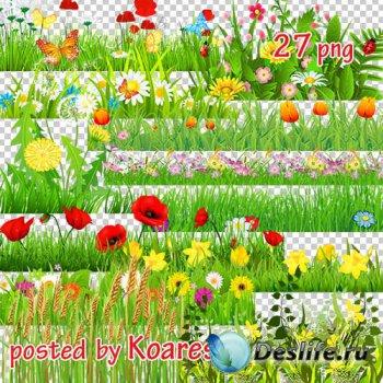 Png клипарт на прозрачном фоне - Цветочный луг, поляны (часть 1)