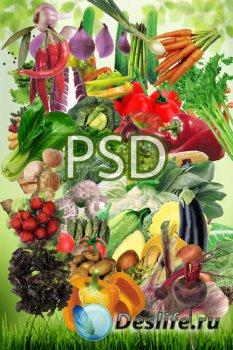 Сочное ассорти зелени и овощей в PSD
