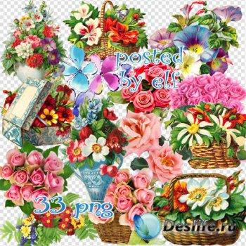 Клипарт в png — Цветы чисты, красивы и невинны