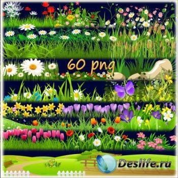 Клипарт PNG для фотошопа - Мавританский газон - образчик цветущего луга