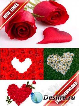 Фотосток: сердце из цветов (рабочие ссылки, бесплатные файлообменники)