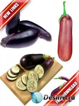 Фотосток: овощи - кабачки, баклажаны, кабаки, сининькие (рабочие ссылки, бе ...