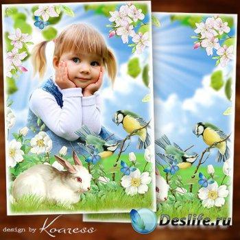 Рамка для детских фото на природе - Летняя поляна