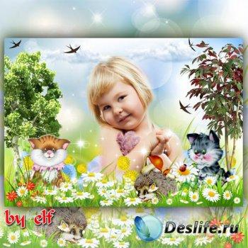 Рамка для детских фото - В поле с ромашками