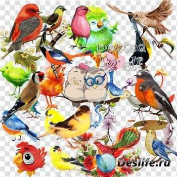 Птицы к югу улетают, исчезая в розовой дали - клипарт в PNG