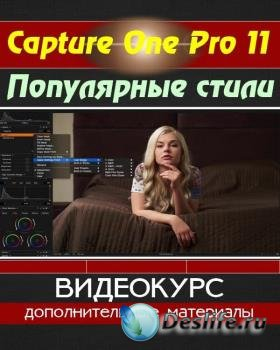 Capture One Pro 11. Популярные стили