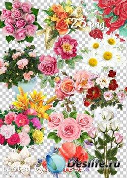 Подборка клипарта png - Цветы, букеты
