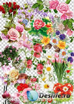 Клипарт png для дизайна - Цветы, цветочные композиции, уголки