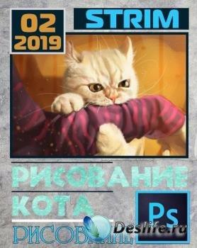 Стрим по рисованию кота в Photoshop