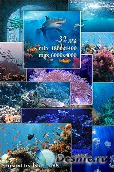 Подборка морских фонов jpg для дизайна - Marine raster backgrounds  for des ...