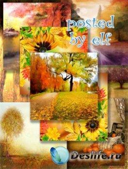 Фоны для дизайна - Осень