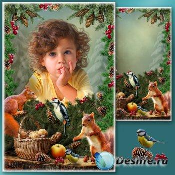 Рамка для фотошопа - Зимний натюрморт 2