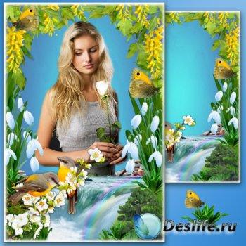 Цветочная рамка для фото - Весенняя радуга