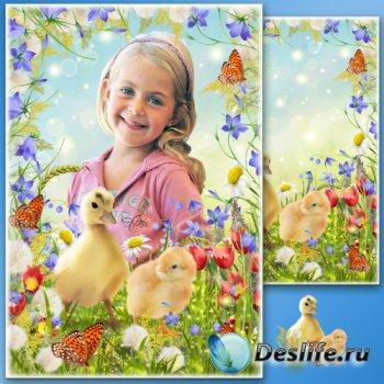 Рамка для фото с полевыми цветами - На весеннем лугу